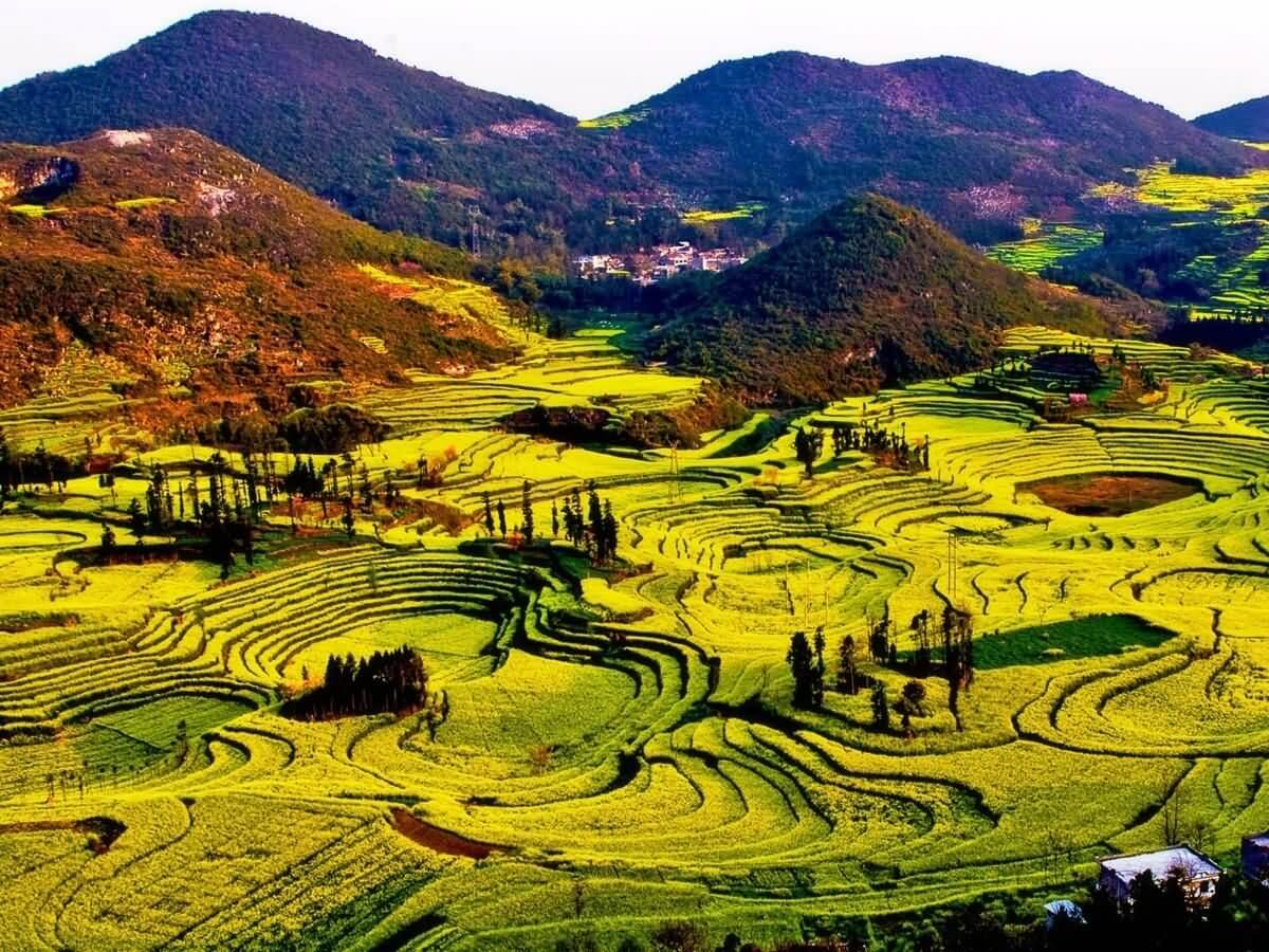Luoping 2 - China Tours