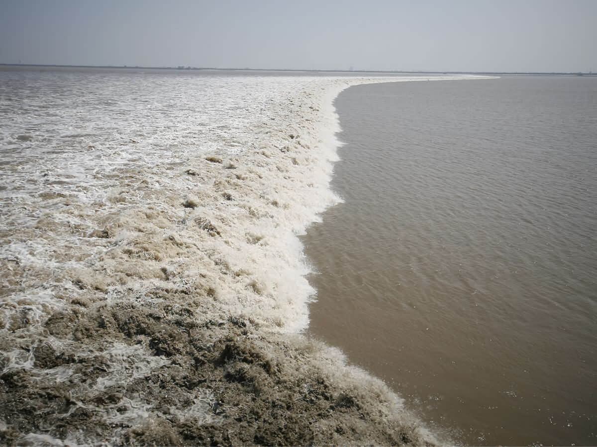 Qiantangjiang Tidal Bore - China Tours