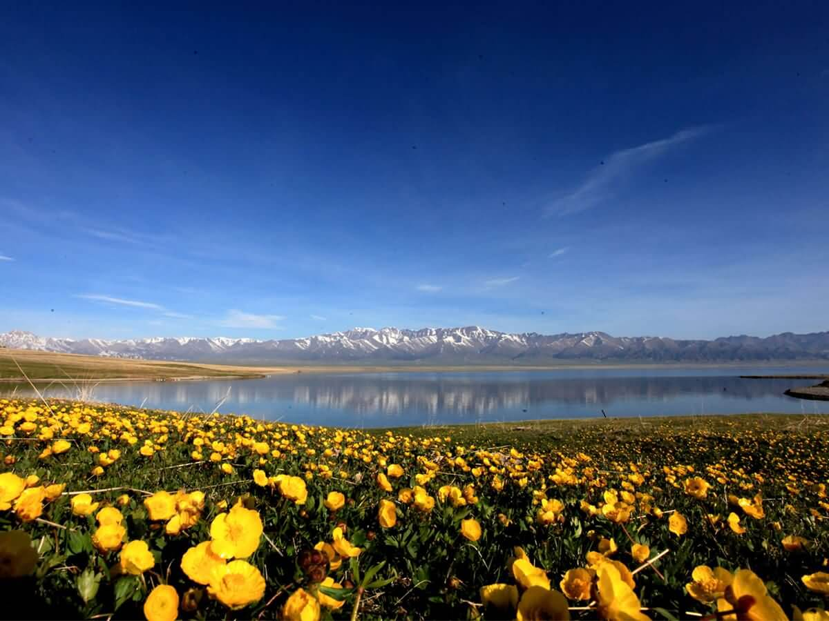 Sayram Lake - China Tours