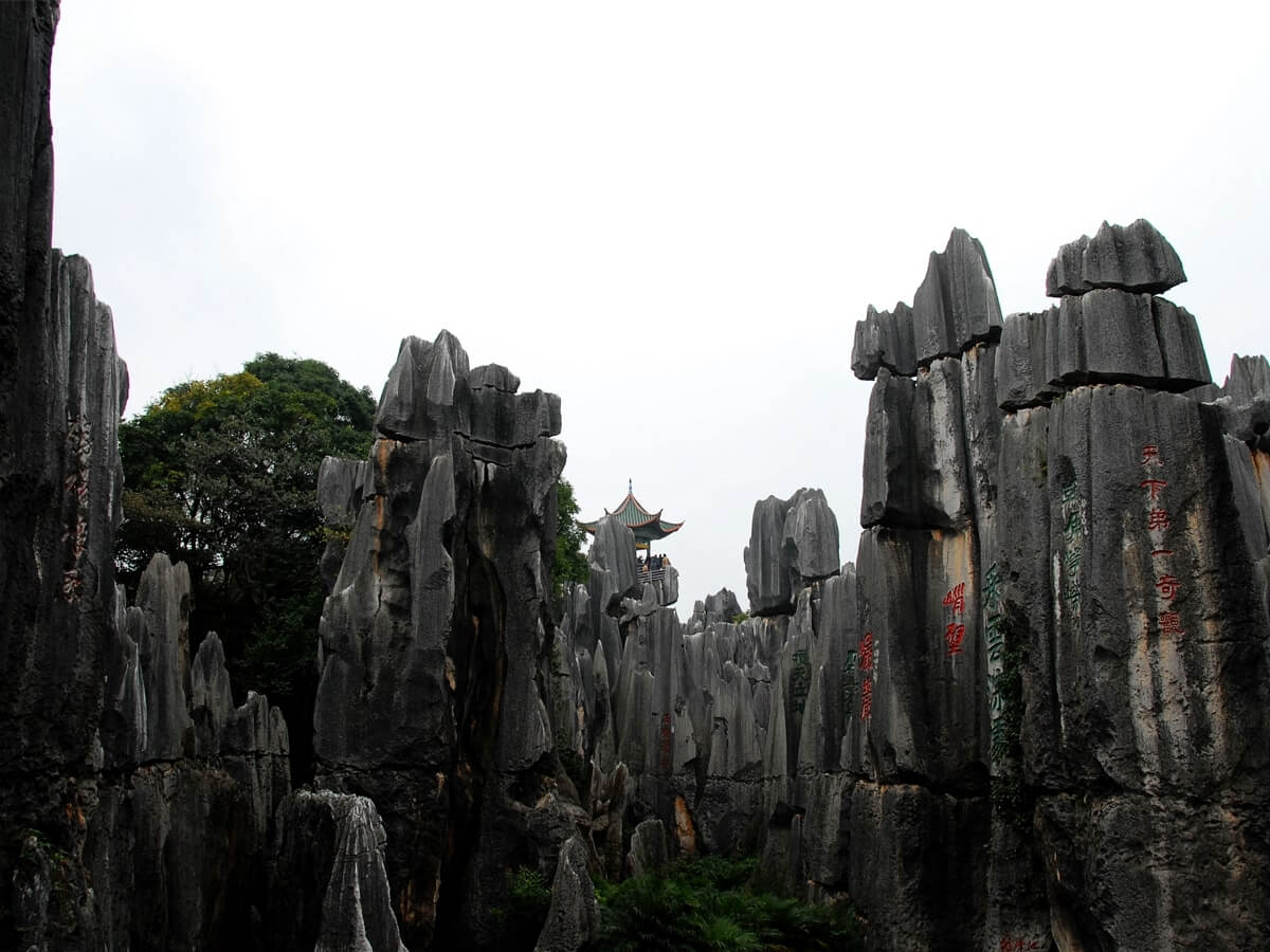 Stone Forest - China Tours